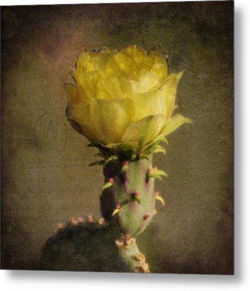 Vintage Yellow Cactus Metal Print