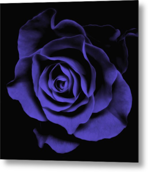 Abstract Blue Roses Flowers Art Work Photography Metal Print