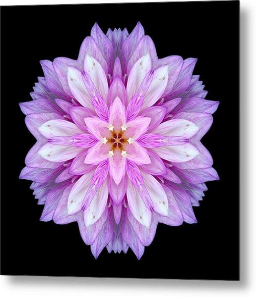 Violet Dahlia I Flower Mandala Metal Print