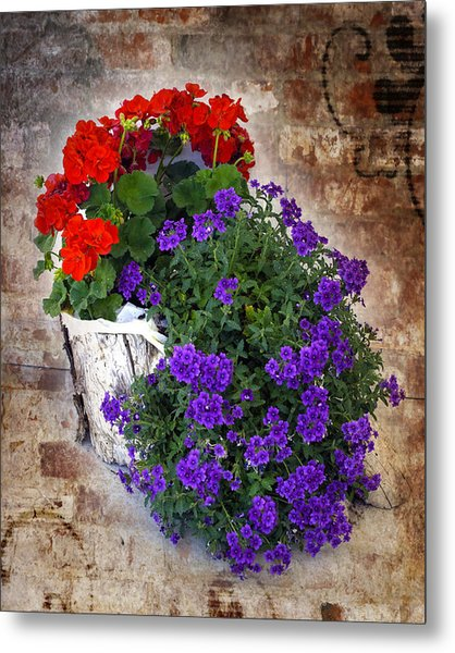 Metal Print featuring the photograph Violets And Geraniums On The Bricks by William Havle