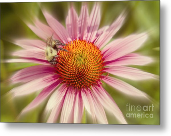 Vip Very Important Pollinator Metal Print