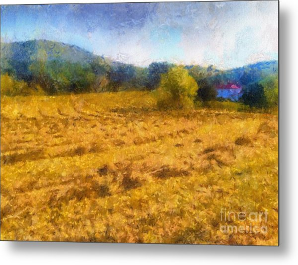 Virginia Fields Metal Print