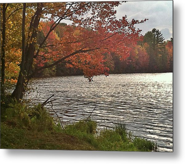 Virginia Landscape Art Metal Print