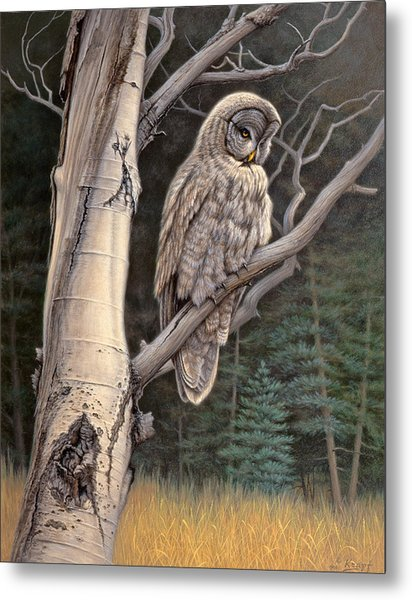 Visitor From The North-great Grey Owl Metal Print