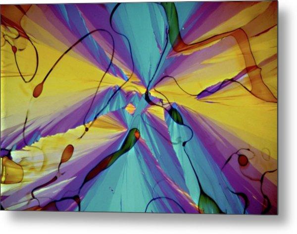 Vitamin E Crystals Metal Print by Dennis Kunkel Microscopy/science Photo Library