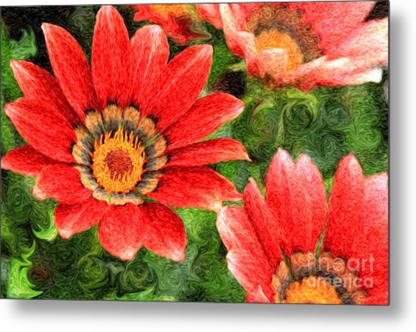 Vivid Orange African Daisy Digital Oil Painting Metal Print
