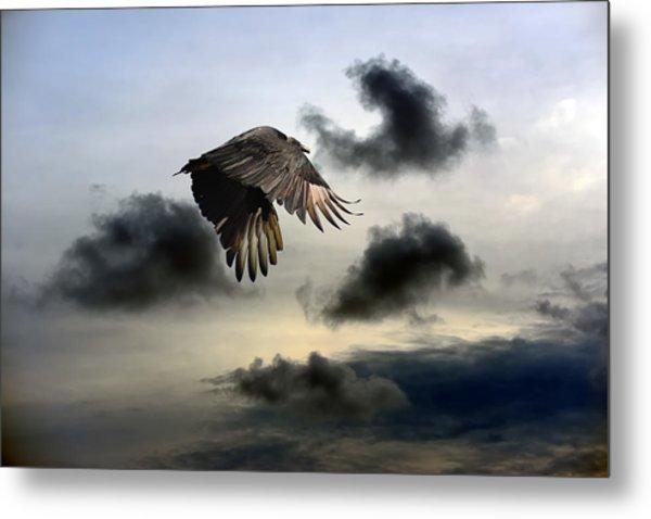 Vulture Sky Metal Print