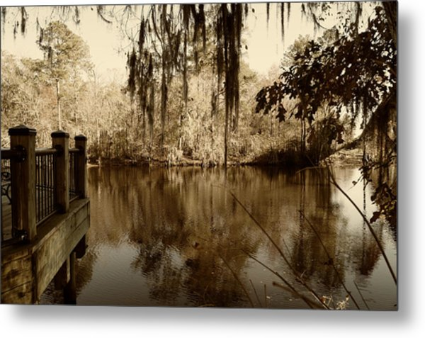 Waccamaw River In Autumn Sepia Metal Print