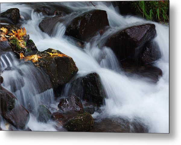 Wahkeena Creek Detail 1 Metal Print
