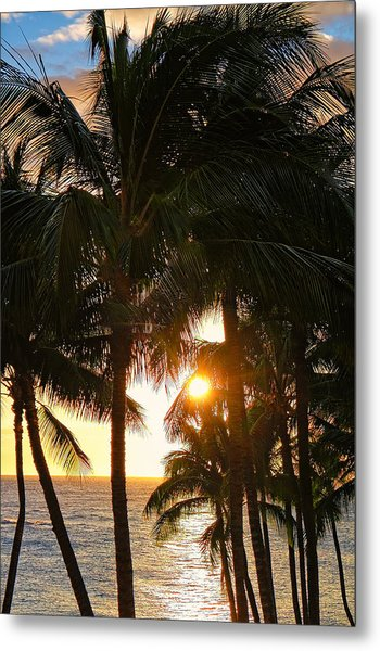 Waikoloa Palms Metal Print