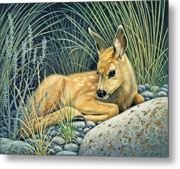 Waiting For Mom-mule Deer Fawn Metal Print