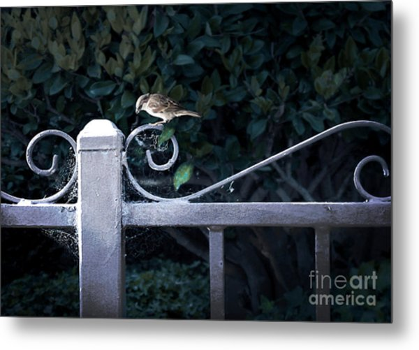 Waiting For Your Call Metal Print by Ellen Cotton