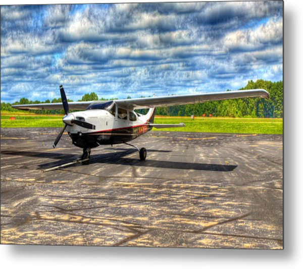 Waiting To Fly Metal Print