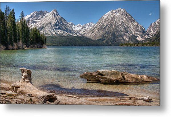 Metal Print featuring the photograph Walk In Paradise by Darlene Bushue