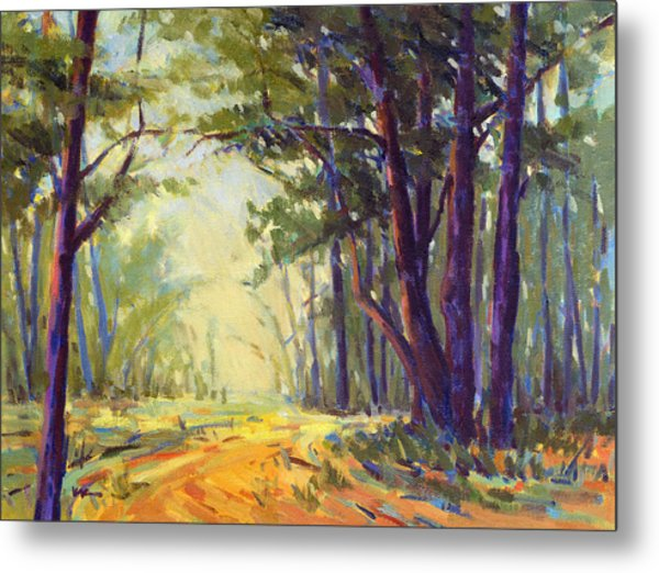 Walk In The Woods 5 Metal Print