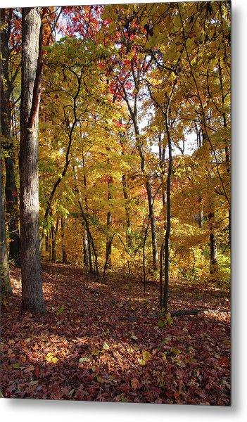Walk In The Woods - Vertical Metal Print