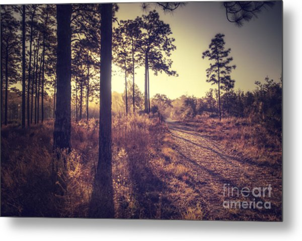 Walk Into The Light Metal Print