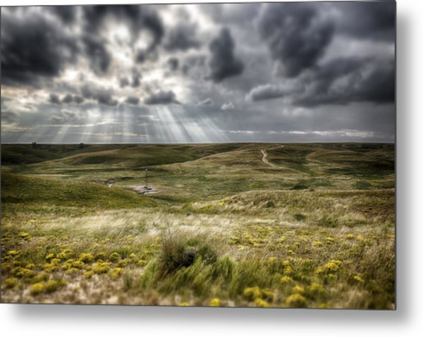 Walkabout  Metal Print
