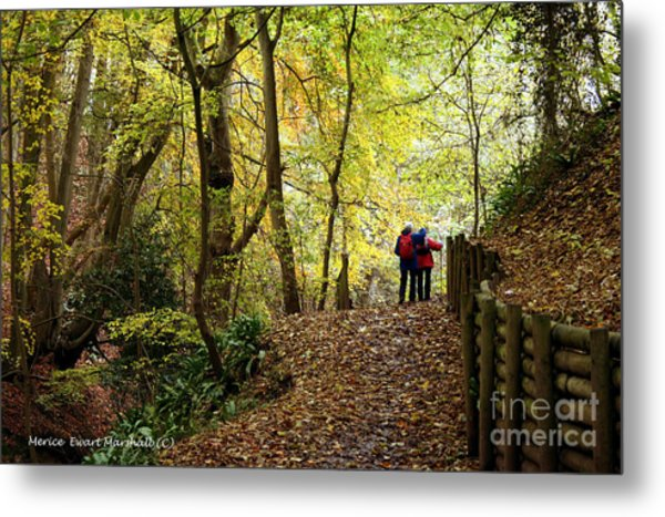 Walkers In The Woods Metal Print by Merice Ewart