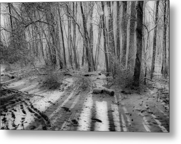 Walking  Amongst Shadows Metal Print by Thomas  MacPherson Jr