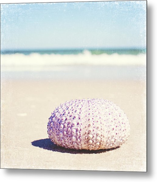 Walking The Shore Metal Print