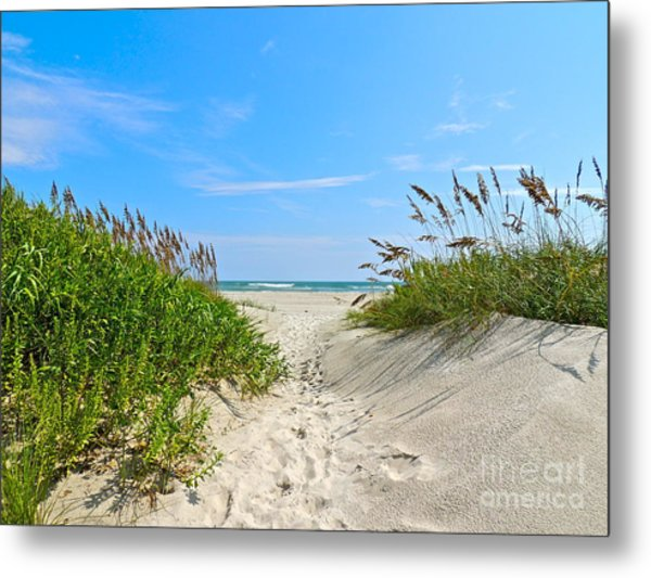 Walking Through The Sea Oats Metal Print