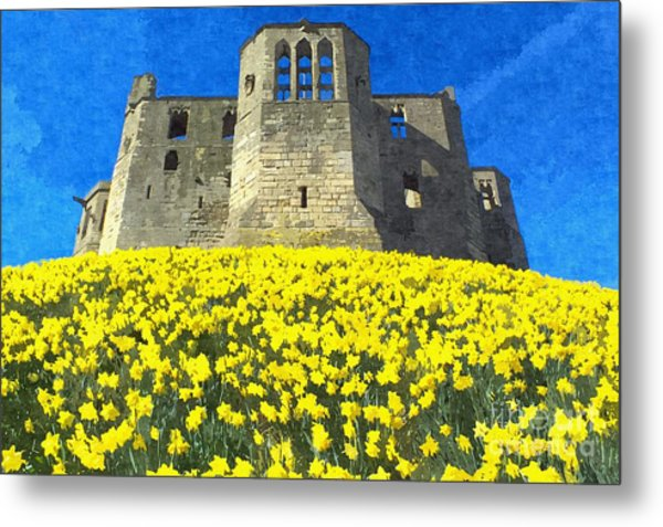 Warkworth Castle Daffodils Photo Art Metal Print by Les Bell