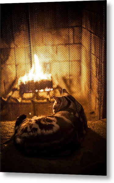 Warm Kitty Metal Print