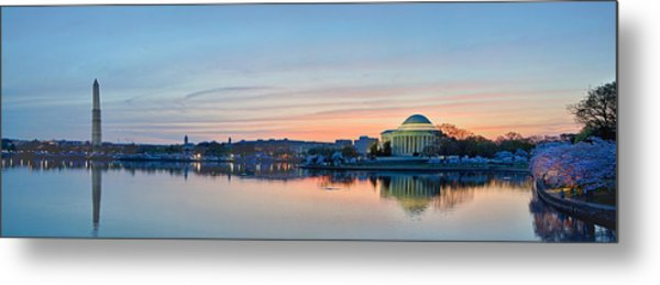 Wash Dc Cherry Blossoms Metal Print