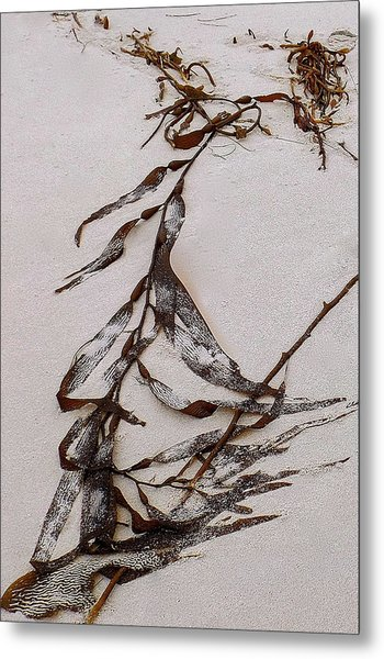 Washed-up Art-  20 Metal Print