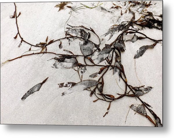 Washed-up Art-  12 Metal Print