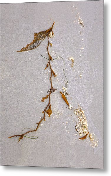 Washed-up Art-  2 Metal Print