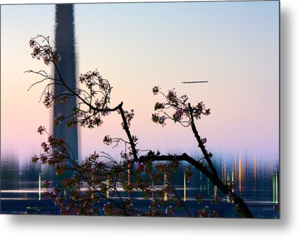 Washington Monument Reflection With Cherry Blossoms Metal Print