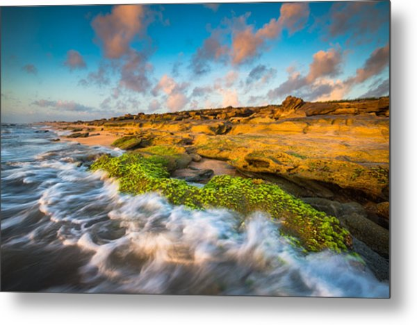 Washington Oaks State Park Coquina Rocks Beach St. Augustine Fl Beaches Metal Print