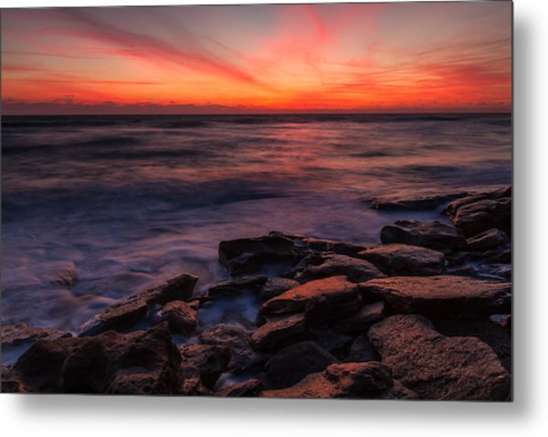 Washington Oaks Winter Sunrise Metal Print