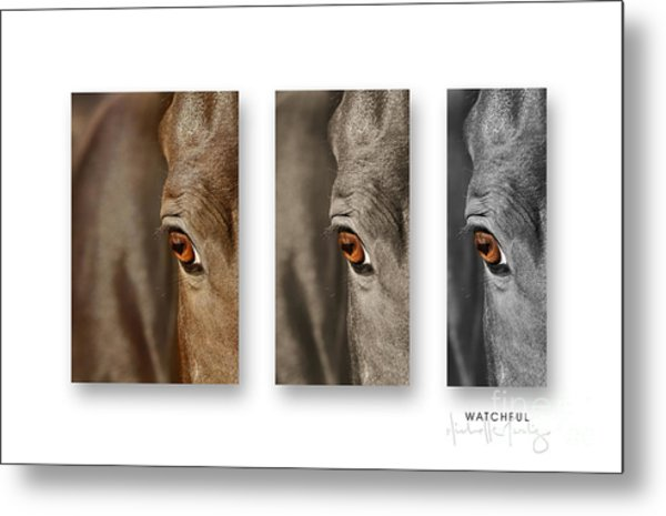 Watchful Triptych Metal Print