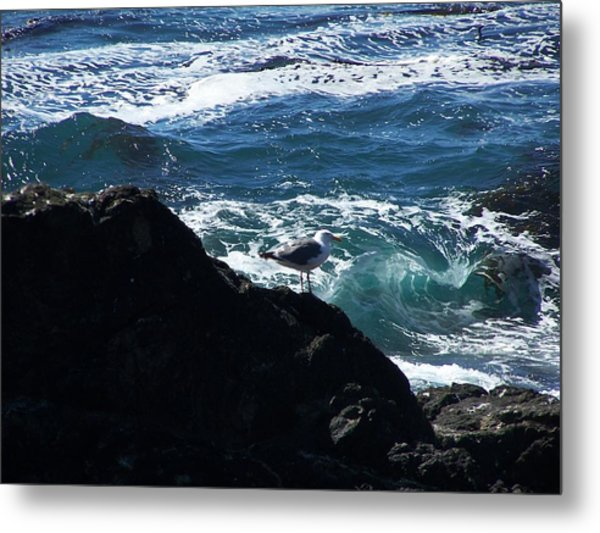 Watching As The Waves Pass By Metal Print