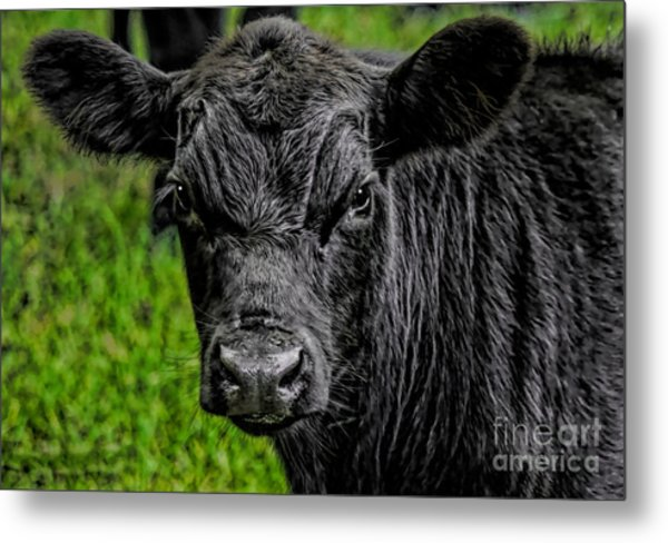 Watching Me Metal Print