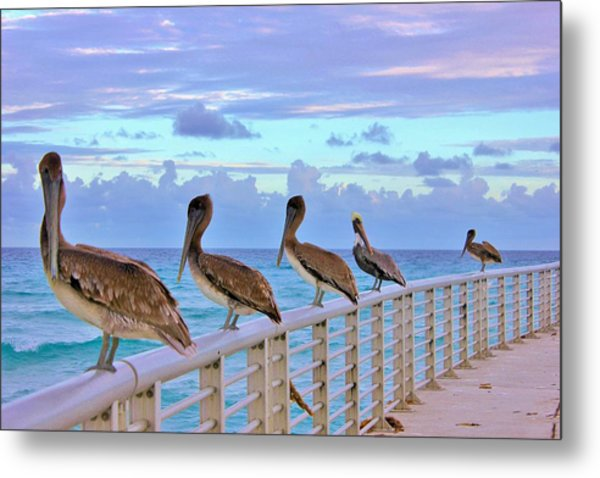 Watching The Ocean Metal Print