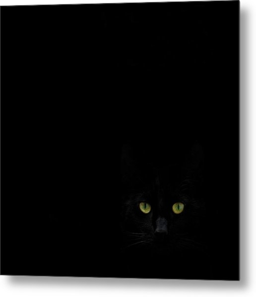 Watching You From The Dark Side Metal Print