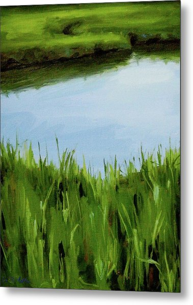 Water And Grass Swirl Metal Print