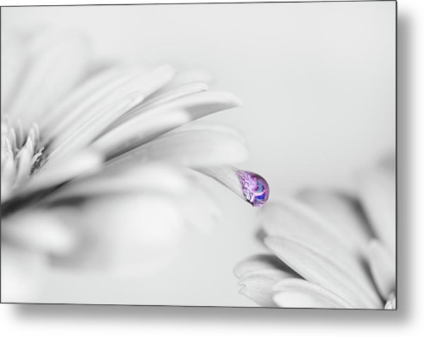 Water Drops Metal Print by Mikroman6