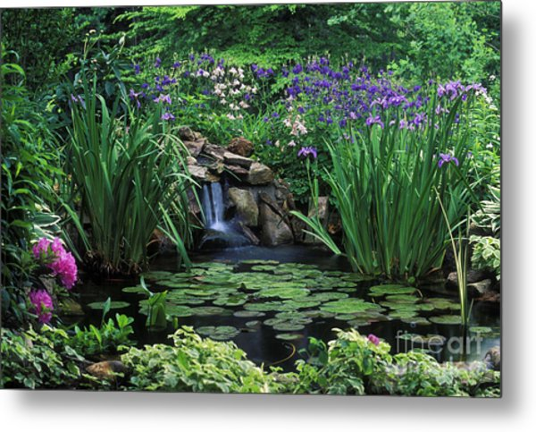 Water Feature - Fs000150 Metal Print