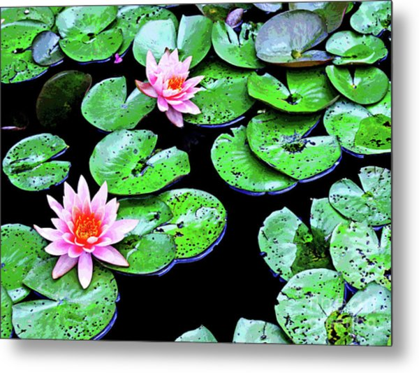 Water Lillies -- Inspired By Monet-1 Metal Print