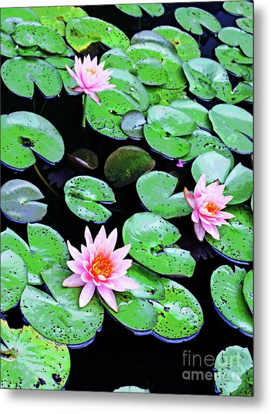 Water Lillies -- Inspired By Monet-2 Metal Print
