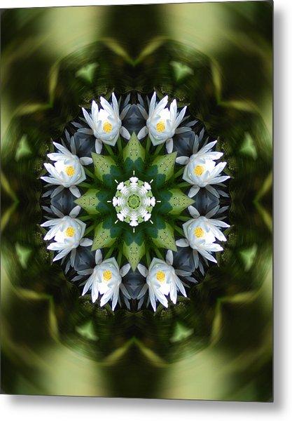 Water Lily Mandala Metal Print by Peter Kallai