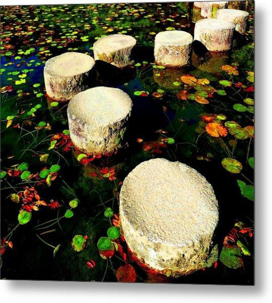 Water Path Metal Print