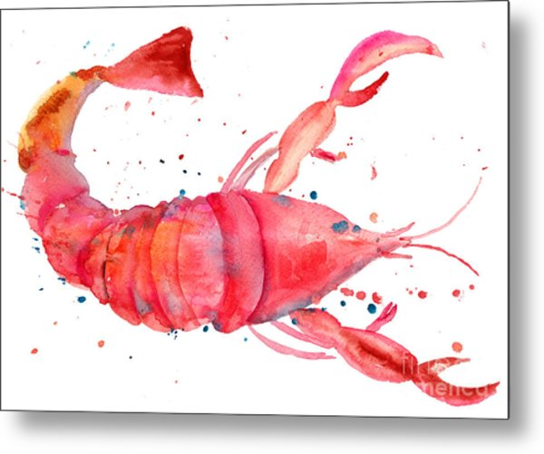 Watercolor Illustration Of Lobster Metal Print
