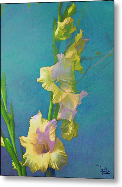 Watercolor Study Of My Garden Gladiolas Metal Print