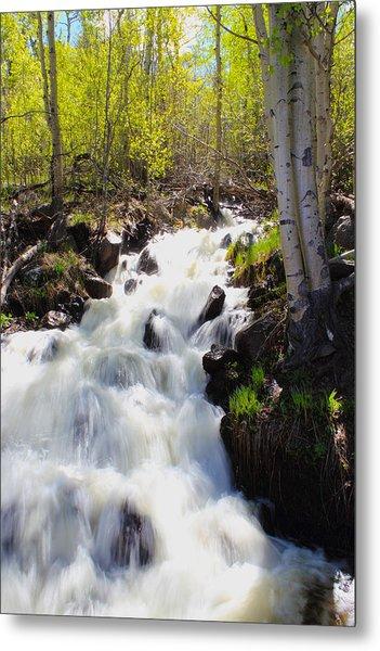 Waterfall By The Aspens Metal Print